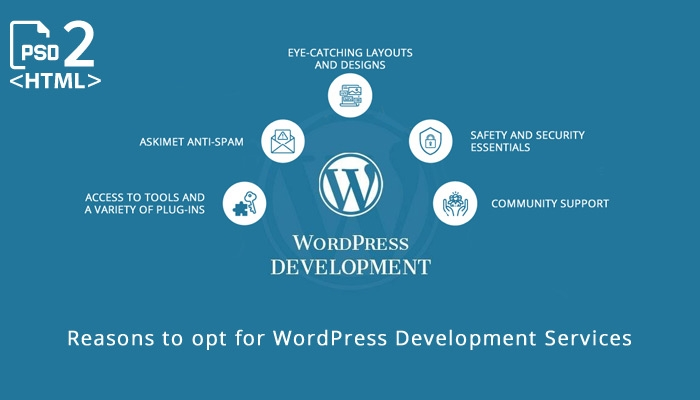 5 Reasons to opt for WordPress development services
